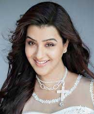 Soni-Khurana-cast-actress-in-My-lost-home-Zee-world
