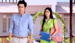 Kindred hearts Zee World: Summary, Full story, casts