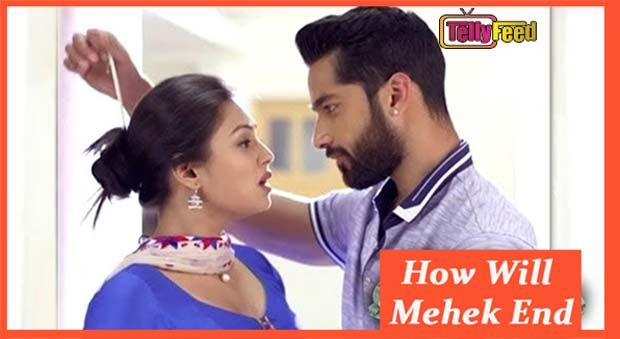 How Will Mehek End? Mehek and Shaurya death, Final Episode