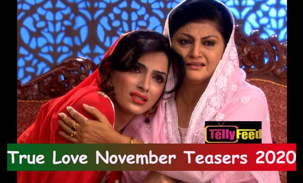 True Love November Teasers 2020 Glow Tv